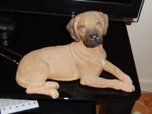 Sandicast Rhodesian Ridgeback dog Figurine in Fort Bragg, North Carolina